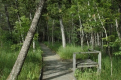 purdon-boardwalk-1